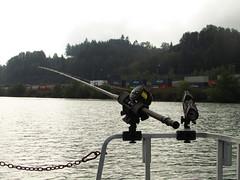 Benchin and Fishin' (Sun T'zu) Tags: sturgeon bc fishing canada dinosaur river fraserriver catchandrelease sportfishing