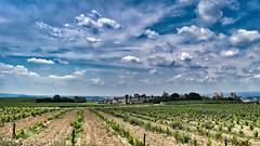 Carcassonne. (Pascal Rey Photographies) Tags: panorama horizon landschaft landscapes paysages hérault carcassone villefortifiée vigne lignes lines france fra