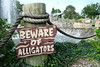 Beware of Alligators (tpbphotopage) Tags: travel usa america new england holiday vacation photography fujifilmxa2 fujifilm fuji states macro summer sun outside sightseeing golf mini course rope green nature outdoors water trees natural massachusetts cape cod