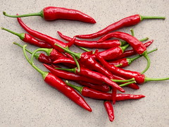 Chilli Peppers (jano45) Tags: chilli pepper peppers red hot hotpeppers