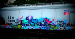 (timetomakethepasta) Tags: born alone die freight train graffiti art ssw grainer union pacific benching selkirk new york photography