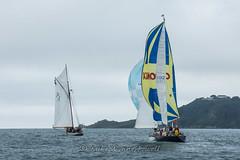 Polly Agatha, Mabel and Griffon (Matchman Devon) Tags: classic channel regatta 2017 st peter port paimpol polly agatha mabel griffon