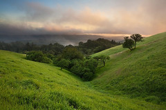 My favorite hillsides, in Russian Ridge Open Space, California [OC] [1750x 1167] (frjalv) Tags: ifttt reddit california centralcalifornia northerncalifornia chaparral meadow grass field hills hilly mountain santacruzmountains landscape beautiful photograph pink blue green brightgreen bright vibrant sunset dusk evening sunrise dawn foggy fog clouds peaceful spring lush trees forest oak oaktrees nature wilderness rural bucolic scenic outdoors travel tourism sky vista calm quiet tranquil moor russianridge russianridgeopenspace