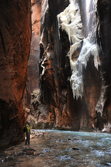 Zion Narrows (bethanybeech) Tags: zionnationalpark narrows hiking utah winter february