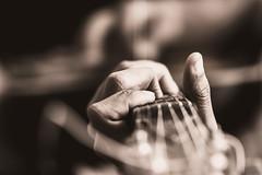 Working hand (Photo Stories by Swaniket Chowdhury) Tags: nikon nikond3300 ph photograph 35mm 35mm18g lightroom moody guitar music apsc cropsensor adobe cc