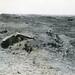 Iwo Jima Landscape, 1945
