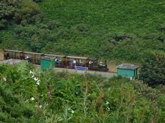 Groudle Glen Railway: Sea Lion passing Lime Kiln Halt (29/07/2017) (David Hennessey) Tags: groudle glen railway sea lion bagnall lime kiln halt