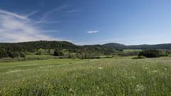 Le petit chemin (Titole) Tags: landscape jura grass path sky titole nicolefaton countryside