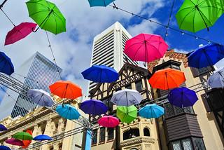 Flying umbrellas ...