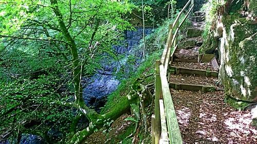 Llandogo-Cleddon Falls-Trelleck circular