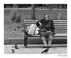 молдавский бабка (PIVAMA|photography) Tags: молдавский бабка moldovan babuska oma grandma chisinau moldova moldavia bench omroep max pidgeon duif