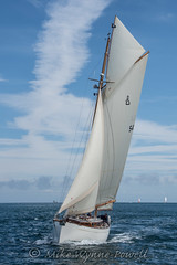 Spirit of Callisto view 2 (Matchman Devon) Tags: classic channel regatta 2017 paimpol spirit callisto