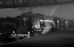 Swanwick Junction, MRC (Andrew Edkins) Tags: 46233 duchessofsutherland coronationclass lms stanier swanwickjunction railwayphotography preservedrailway geotagged canon night midlandrailwaycentre photoshoot timelineevents steamtrain uksteam