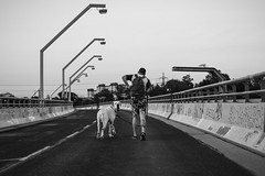 Big Buddy (CoolMcFlash) Tags: person street streetphotography bridge pet animal dog man vienna bnw blackandwhite blackwhite strase brücke haustier tier hund mann wien sw schwarzweis fotografie photography candid graffiti urban city stadt citylife fujifilm xt2 xf 35mm f14 r friends freunde