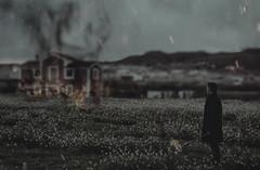 BROKEN MEMORIES (oroyplata.) Tags: memories recuerdos fire fuego smoke humo field campo flowers flores landscape man gabardina piromano lejania explore casa home hogar negro dark