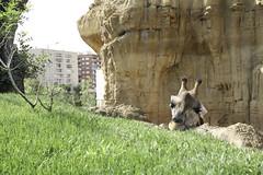 Trip to Valencia 2008 - le Bioparc