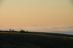 Foggy morning | Calgary Downtown (getting back ( slowly )) Tags: foggy morning calgary downtown sunrise vhour earlymorning
