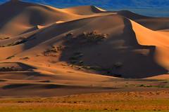 Sunset desert. (Victoria.....a secas.) Tags: mongolia gobi desierto desert dunas dunes atardecer sunset