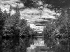 Pine River Afternoon (gmolzahn) Tags: monochrome pineriver iphone silverefexpro2