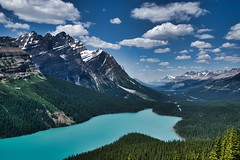 Looks like a wolf to me (Jim Nix / Nomadic Pursuits) Tags: jimnix nomadicpursuits travel peytolake canada banffnationalpark canadianrockies sony sonya7ii 2470mm lake glacial alpine mountains luminar macphun clouds hike trail wilderness
