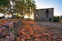 Last sunrays at Roscigno vecchia (f4b1u5) Tags: leaves sunset sunsetlight roscignovecchia italy stones abandonedtown ghosttown trees