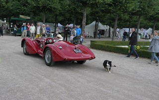 a lady with her wonderful Alfa Romeo sports car (2)