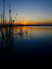 Okavango Delta Sunset (setoboonhong ( Back and catching up )) Tags: travel okavango delta unesco world heritage site north botswana outdoor sunset colours peaceful calm reeds silhouettes reflections tones mokoro dugout canoe
