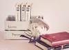 34/52. Caja de libros (Cristina Ovede) Tags: stilllifephotography stilllifegallery stilllife livres libros books canon canonphotography
