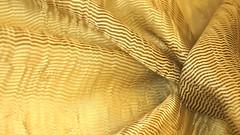 "Коллекция Orfeo полиэстер шир.330 см 3200 р/м скидка 50% • <a style=""font-size:0.8em;"" href=""http://www.flickr.com/photos/92440394@N04/36715461393/"" target=""_blank"">View on Flickr</a>"