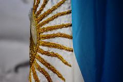 Fecha patria (luenreta) Tags: 7dwf crazytuesdaytheme 3colores bandera flag blanco dorado argentina celeste patria