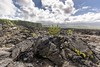 Ile_de_la_Réunion-12 (Sebasca56) Tags: volcan piton fournaise ile réunion