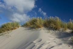 Amrum dunes (kalakeli) Tags: amrumdünen amrum dunes dünen sky himmel insel island nordsee northernsea august 2017 sand impressionen impressions