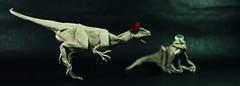 Couple of Cryolophosaurus (adam tran) Tags: origami dinosaurs