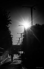 _IMG2092 Enésimo contraluz (Rafael Ojea) Tags: rafaelojea urbana contraluz solpor sunset farolas pentaxk1 vigo bn blancoynegro