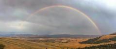 Yellowstone rainbow (Chief Bwana) Tags: wy wyoming yellowstone yellowstonenationalpark nationalparks rainbow mtwashburn panorama psa104 chiefbwana explored 500views 1000views 2000views 3000views 4000views 5000views 6000views 7000views 8000views 9000views 10000views 11000views 12000views 13000views 15000views 14000views 2017fav