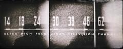 Tinnitus-11482 (Poetic Medium) Tags: moldiv blackandwhite rni kitcamghostbird snapseed ipod diptych