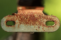Mr Rust (Chandana Witharanage) Tags: srilanka southasia macromondays macrophotography macro rust bybicyclepart gardenshot interesting naturallight 7dwf wednesdaymacroorcloseup