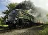 uofsa-ms-0597 (Mark Strain.) Tags: lner a4 steam locomotive nene valley railway peterborough 2017 60009 mark strain canon dslr train union south africa osprey gresley engine castor