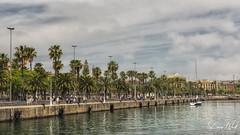 Moll de Bosch di Alsina (BAN - photography) Tags: rambladelmar port harbou tourists architecture belltower streetlighting lampposts palmtrees clouds d810 sailboat esplanade