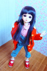 Coat made by me (imida73) Tags: dim flowne bjd ball jointed doll 14