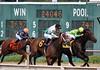 (spotboslow) Tags: suffolkdowns boston revere massachusetts thoroughbred horseracing legendaryking davidamiss cinderblock rubensilvera brotheroconnell dylandavis