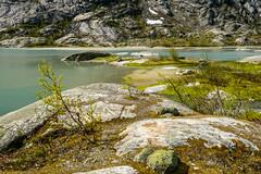 Nigardsbreen, Norway (dconvertini) Tags: nigardsbreen norway