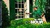 إبادة القوارض بحفر الباطن2 (nouralimran1) Tags: movies scarlettjohansson actress intro image creative good amazing supper adobe photoshop reality drama أبها الواقع العالمية مكة عفش إنتريهات صالون قوة جمال رونق إبداع تفرد الخيال تفكير
