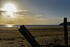 color plage 2eme jour (14) (jolymaxime86) Tags: normandie plage mer see beach bateau boat sun soleil ombre shadow voile noir blanc black white maxime joly