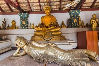 chiang mai - thailande 66