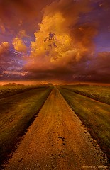 For Thou Art With Me (Phil~Koch) Tags: landscape sun light field art meadow sky twilight horizons horizon sunset clouds wisconsin scenic vertical photography blue yellow green office portrait serene morning dawn nature natural earth environment inspired inspirational season beautiful peace hope love joy dramatic unity trending popular canon camera rural fineart arts shadow sunrise woods forest flowers shadows outdoors summer storm cloud road gravel path travel