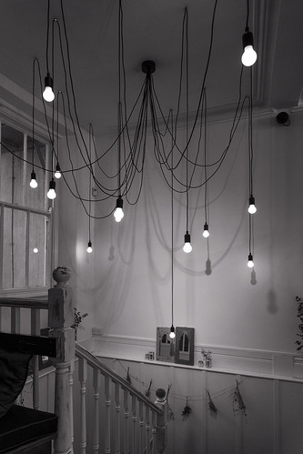Lamps And Cords