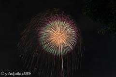 _IMG6404.jpg (y.takahashi84) Tags: hanabi fireworks 花火 東松山 日本の夏 japan saitama