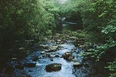 River 5 (avenwildsmith) Tags: film 35mm nature devon countryside analog analogue kodak retinette 1b grain england britain wild wilderness water river tavy rocks stones 35mmfilm kodakretinette1b
