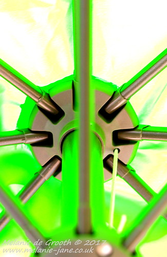 Green Umbrella Structure 2